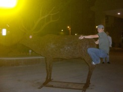 Andrea riding the Elk