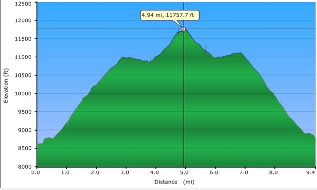 Deluge Elevation Profile